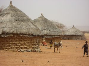 Village houses with donkeys and children